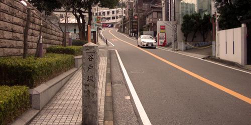160312yoko6.jpg