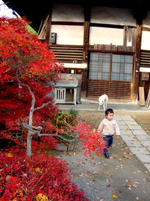 091203_kyoto2.jpg