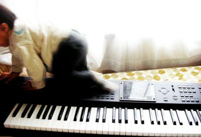 ピアノに登る