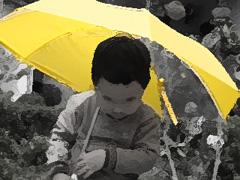 1006_rain.jpg