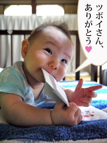 110813tsubosama.jpg