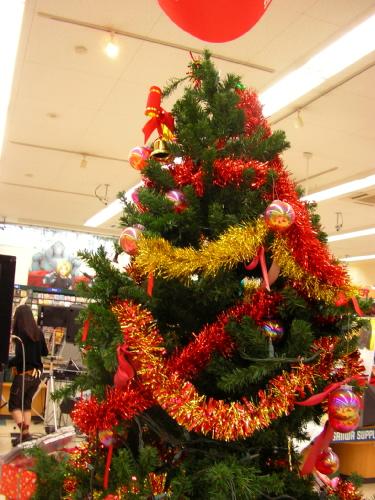 sumiya_tree_1.JPG